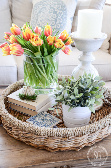 Perfect flowers and plants to place on a coffee table in a living room for a spring decor style.